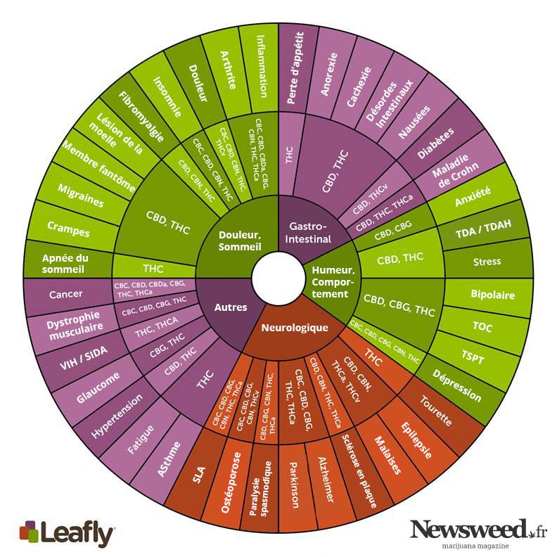 Les bienfaits sur la santé du cannabis, par cannabinoïde.