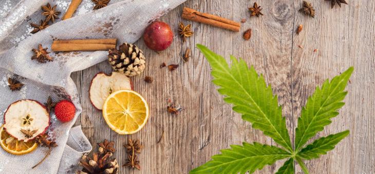 Le cannabis et le temps des Fêtes
