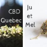 Affiche CBD Quebec Ju et Mel cover