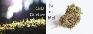 Affiche CBD Quebec Ju et Mel cover facebook