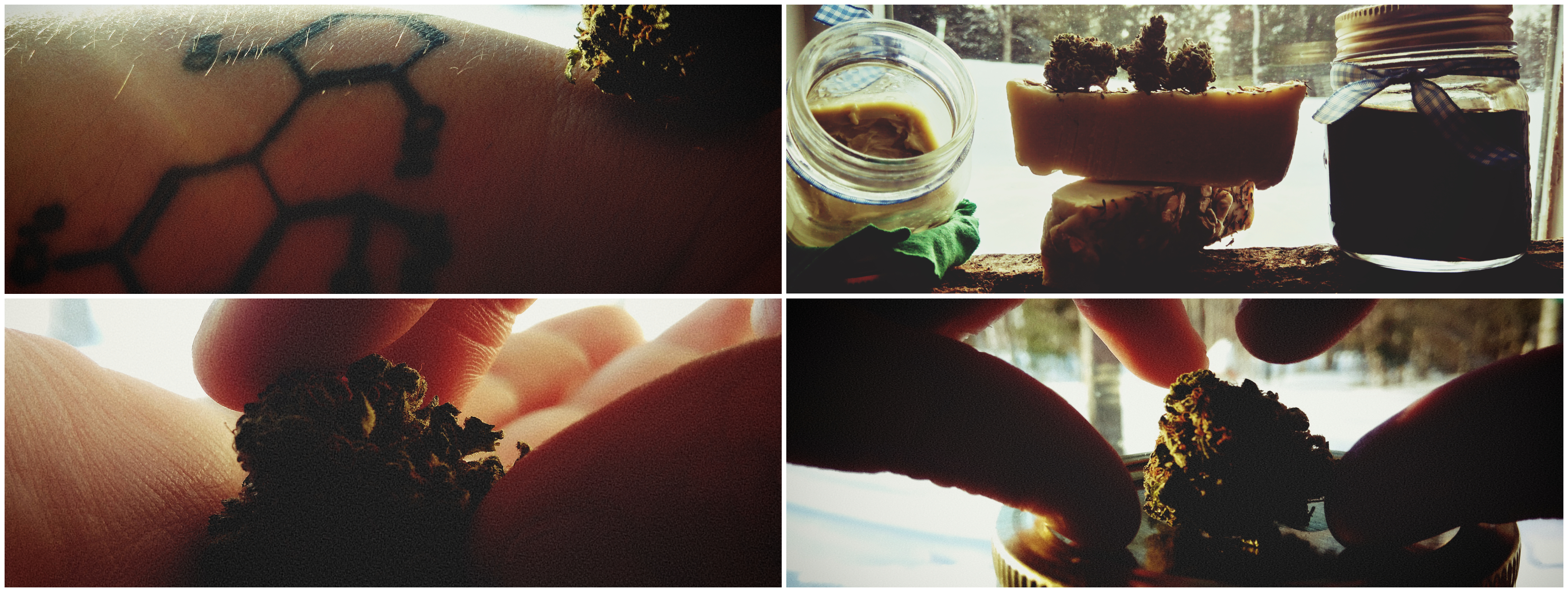 savon huile Cannabis thérapeutique savon huile CBD Quebec Ju et Mel
