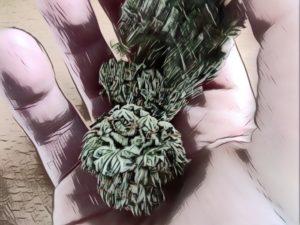 Depression soignee avec cannabis weed CBD Quebec Ju et Mel