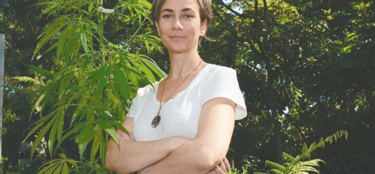 Le cannabis pour le traitement du cancer